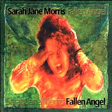 Fallen Angel album cover