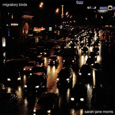 Migratory Birds album cover