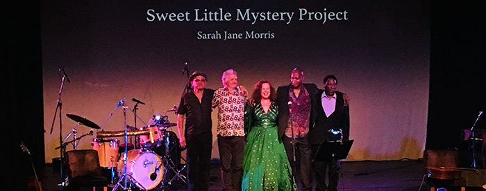 'Sweet Little Mystery' Project taking a bow